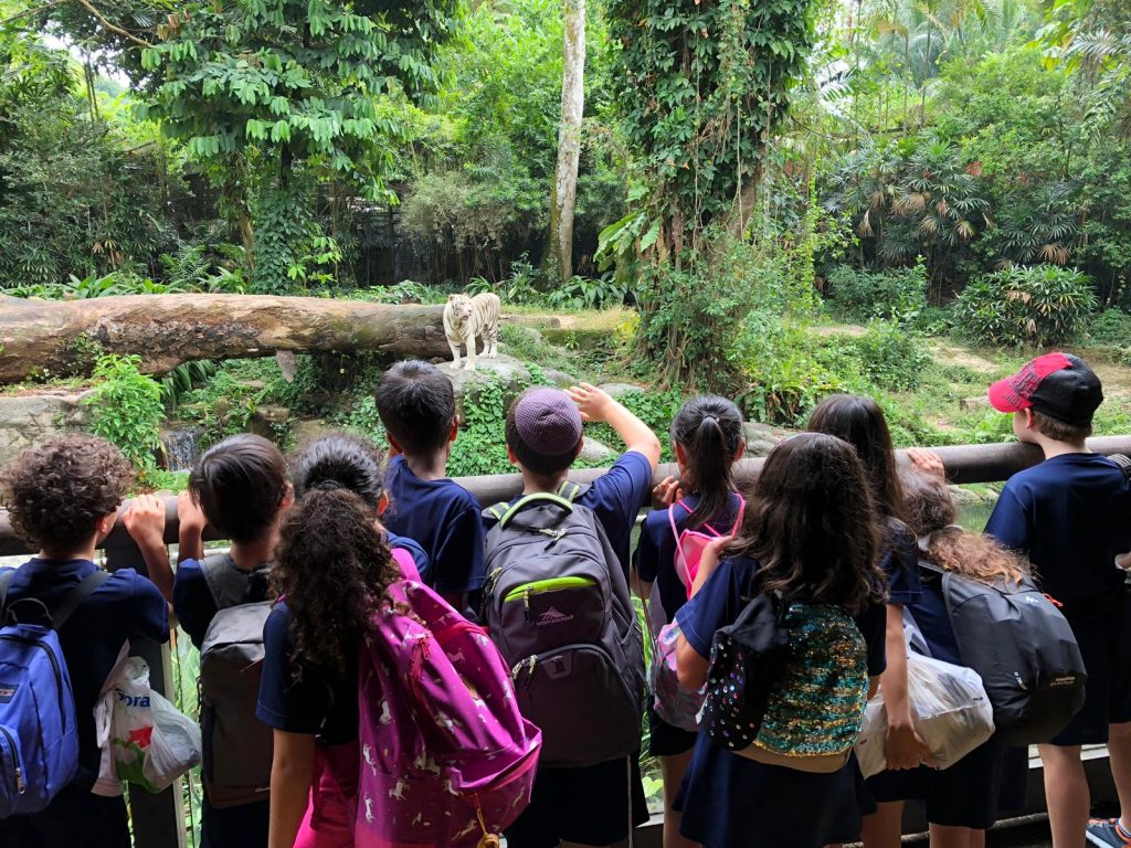 Zoo field at SMMIS International School Singapore