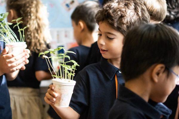 smmis school boy holding plant